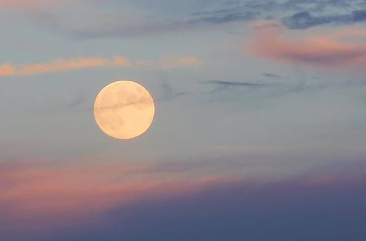 cal-moon